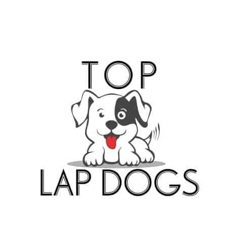 Top Lap Dogs Logo
